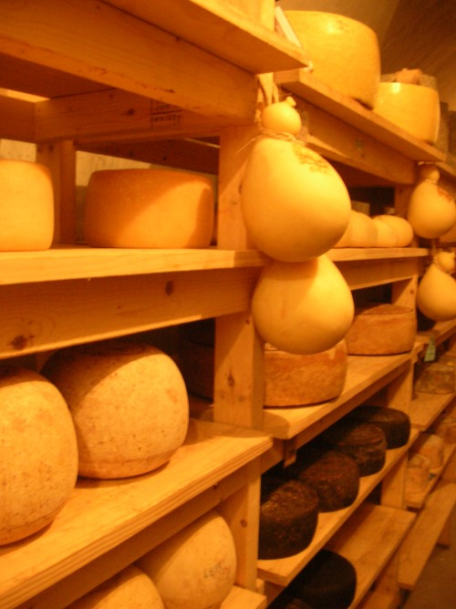 Cheese shelves