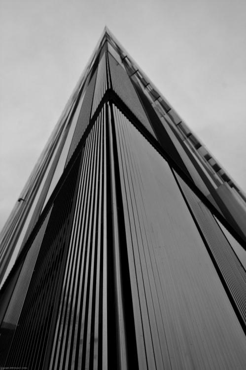 7WTC, Steven Cohen